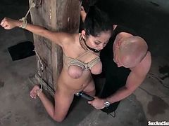 This amazing Latina babe gets blindfolded and then surprised with some huge toys. This honey is so fucking amazing!