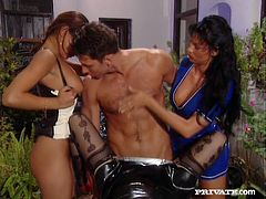 Carmen, Sizi and Vanda suck big dick and a dildo. After that these slutty chicks get fucked in turn in a foursome video.