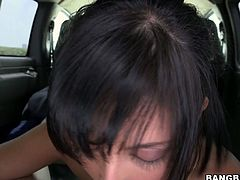 Sex-starved brunette nymph loves the fact that her boyfriend's juicy cock is pretty hard; it turns her on to give him a blowjob right in the car. She sucks that meat pole greedily like a seasoned pro. Check out this amazing sex video and I'm sure you will appreciate her cock sucking skills.