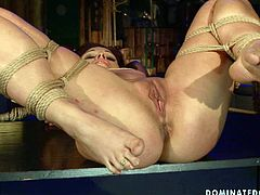 Feisty redhead bitch Szilvia is getting her wet twat licked while tied up and hanged down the ceilin