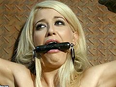 Horny man fixed blindfolded blondie with chains and rubs her clit. Then spoiled man orders booty pretty brunette kneel down to give him a solid blowjob for sticky sperm.