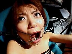 Mouth and legs forced open for Japanese girl