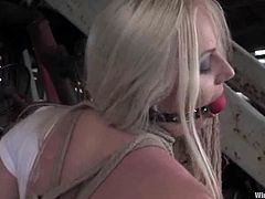Beautiful blonde Erika Angel allows Princess Donna Dolore stuff her snatch with a wired dildo. Then Donna torments Erika and smashes her vag with a strapon.