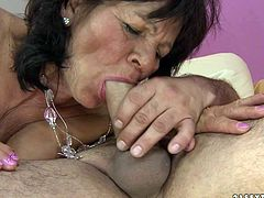 Immense old BBW clings to fat cock of pony looking dude to give it a through blowjob before it drills her puffy bearded cunt in missionary style.