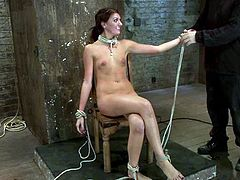 Some wild femdom is going on here! Juicy and smoking hot Cassandra Nix gets bondaged and humiliated by a divine bitch Isis Love.