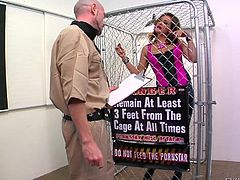 Porn star Tory is caged with a very good reason. The guy lets her out with the promise, she will behave, but this bitch is not gonna keep her word. As soon as he release her, she goes for his cock, sucks it hard and then, sits with her pussy on his face. The dude is about to have the fuck of his life!