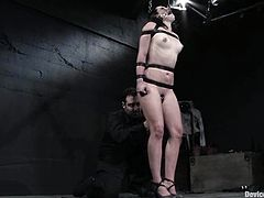 Kinky brunette girl gets bounded and gagged. After that she gets her vagina toyed with a vibrator in close-up scenes.