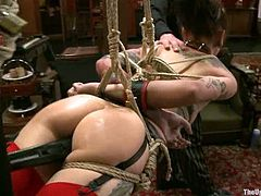 Krysta Kaos and Lilla Katt let some dude restrain and hang them up. The man plays with the chick's bodies and then stuffs their pussies with toys.