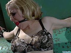 Adorable blonde girl in stockings gets bounded and tortured with clothespins. After that she gets her ass fucked hard.