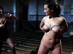Nasty Bobbi Starr ties up Taylor Vixen and spanks her ass. After that Taylor gets her tits pinches with claws. In addition Bobbi sits down on Taylor's face and gets her pussy licked.