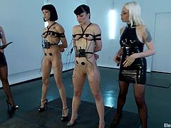 What an action is going on here! Two smoking hot mistresses are humiliating two kinky and playful sex dolls and slaves. A lot of pain and struggle.