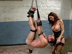 Sexy dominatrix Gia Dimarco is having fun with Jason Miller in a basement. She binds and suspends the dude adn then beats his butt with a stick and fucks his asshole with a strapon.