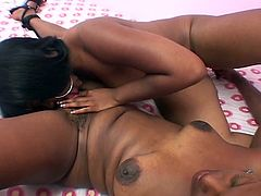 Check out these horny ebony bitches coming straight from the hood. They always have some nasty fun when they get together and share their favorite toys till an orgasm!