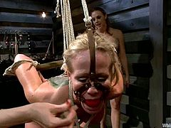 Hot MILF gets tied up and then fisted by Chanel Preston and Lorelei Lee. After that she gets suspended and toyed with a strap-on.