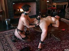 Chicks in bondage belts are being painsulted hard
