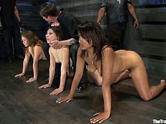 Dana Vixen, Juliette March and other sluts are getting naughty with a few men in a basement. They show their nude bodies to the dudes and get tormented and humiliated afterwards.
