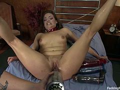 Ashlynn Leigh gets brutally fucked by a sex machine and enjoys it