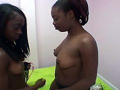 Two black bitches Destiny Lane and Justice Jade grab ass and get down and dirt in lesbian fuck.These lesbos know how to properly use a dildo to stuff their cunts and getting nice orgasms.