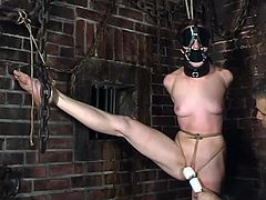 Extremely Tied Up Girl Getting Severe Toying for Orgasm