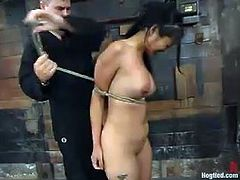 This smoking hot and luscious siren Mika Tan is enjoying her time being suspended and hogtied. Babe screams so loud and that is why he puts a ball gag in her mouth!
