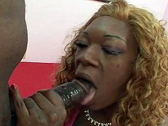 Nasty ebony slut gets on her knees and wraps her whorish lips around a big black cock. She tastes that dong and opens her legs to get her black pussy pounded hard and deep, don't miss it!