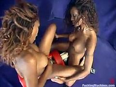 Two beautiful girls Latoya and Tierra are having some fun together. They fondle each other tenderly and then fuck each other's cunts with a fucking machine.
