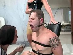 Dana Dearmond and Flower Tucci tie a guy up and torture his dick. Later on their pee on his face and fix clothespins to his nipples. Later on they sit on his face and he licks their pussies.