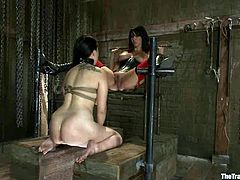 Two girls get tied up and humiliated by their mistress. They lick each others pussies and also get whipped. In addition they get toyed hard.