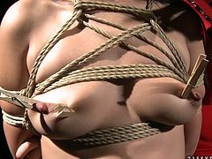 This appetizing brunette chick is bound hand and foot. Cruel mistress knows how to make punishment effective so she clamps clothespins on her slave's tits.
