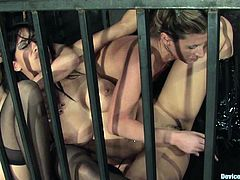 A few hot chicks are having a good time in a basement in a nice BDSM vid. The sluts demonstrate their bodies and sit in a cage.