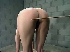 She is being hogtied and even suspended on the yoke bar, which is set up on the floor. Then her master spanks that juicy ass with a tiny and very flexible stick!