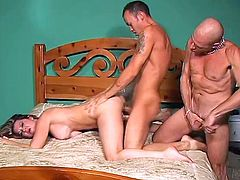 Raquel Devine and two bisexual dudes are having fun indoors. They all have ardent oral sex and then the studs fuck Raquel's juicy vag and each other's tight butts.