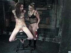 The blonde vixen Delilah Strong will ride Nikki Nievez's face as she put a strapon on her face after fucking her pussy with toys and a sybian in a femdom video.