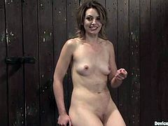 Beautiful girl Sarah Shevon is under some wild penetration