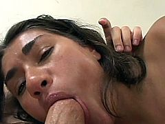 A salacious brunette is doing all what she can to satisfy two dudes. She sucks and rubs their boners and then gets her shaved pussy drilled doggy style and in other positions.
