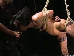 Tied up and suspended brunette gives submissive blowjob