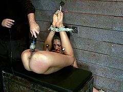 Skinny brunette girl gets tied up by her master. Then he shoves a hook in her ass and also toys her vagina.