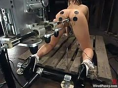 Apart from getting her ass fucked by a machine, Leah Luv is also going to be toyed by the dominant girl who enjoys seeing her suffer with pleasure.