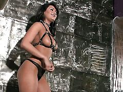 Krissy Lynn is on the way to the height of pleasure with hard dicked bang buddy Manuel Ferrara