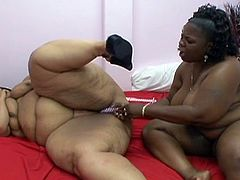 Cum starving fat ebony lesbian sluts toying each other with their vibrating toys. Their greasy pussy slits are begging for some attention and they are giving it to each other.