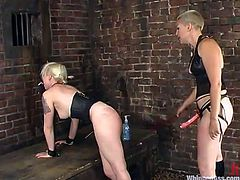 Lovely Lorelei Lee gets undressed and tied up by her cocky mistress. Later on Lorelei also sucks a strap-on and gets toyed deep.