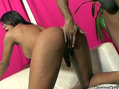 A black cock is going to give delights to this horny tranny who takes it deep in the ass and moans and laughs with pleasure.