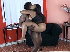 If you're into thick babes cum inside and check out this super hot scene of ebony sex. Chunky ebony flaunts her huge tits and gets buck naked on camera. After she tastes her man's huge black dong, she takes it deep inside her black pussy.