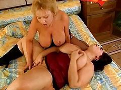 Big boobs and stocking makes those two horny sluts look perfect while they share that green dildo, perfect lesbian scene with two chubby sluts.