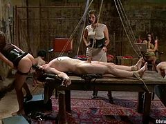 Here is the amazing BDSM porn video with some sexy mistresses pegging their male slaves! All they do is just moan through ball gags.
