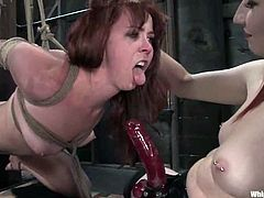 Claire Adams and Trinity Post are having BDSM fun indoors. The dominatrix binds and suspends her slave and tortures the bitch before drilling her snatch with a strapon.