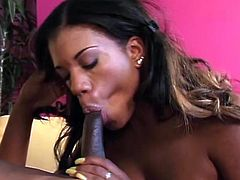 Ebony chick Sydnee Capri with big black butt and natural tits sucking and fucking missionary and doggystyle in her fishnet.