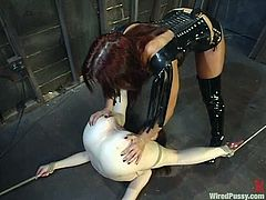 Two dominant vixens are going to play with this redhead in what definitely is one crazy lesbian bondage video with lots of toying.