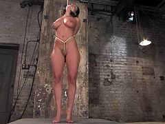 Luscious and charming honey gets fucked up