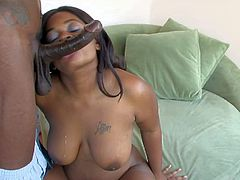 Shai Blakstar is a juicy chocolate skinned girl with big natural boobs. She shows her assets as she gets her hairless meaty pussy attacked by thick black cock. She gets fucked with legs apart.